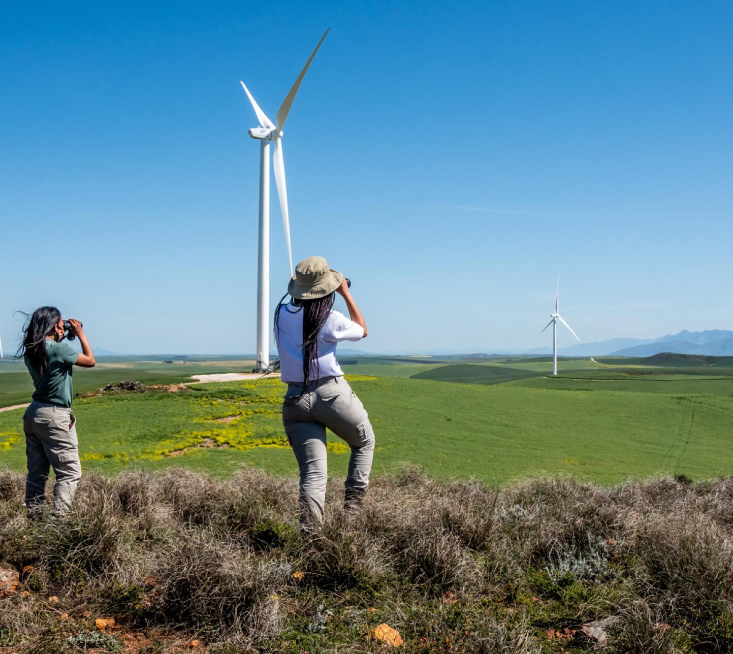 BTE-Renewable-Energy-Producers-5